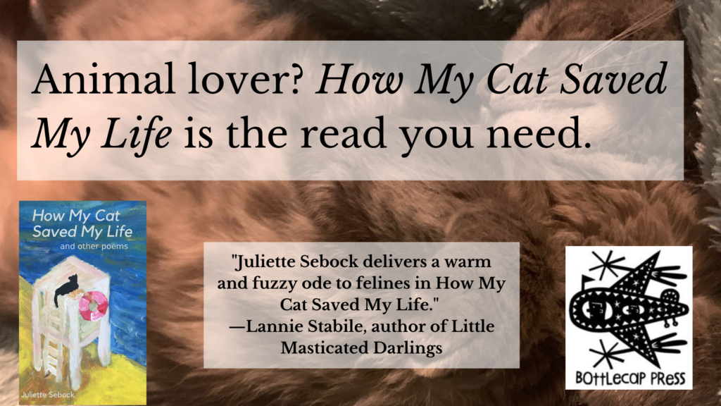 How My Cat Saved My Life - Animal Lover Banner