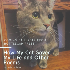 How My Cat Saved My Life graphic